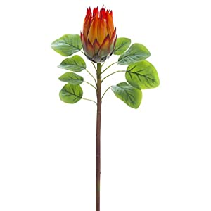 "26"" Protea Silk Flower Stem -Orange (Pack of 12) 84"
