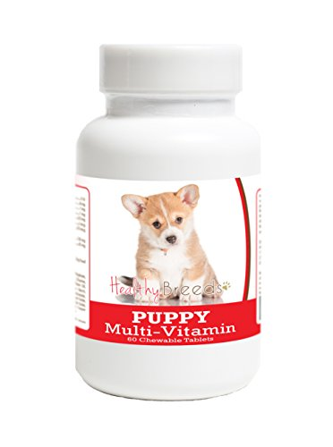 Healthy Breeds Multivitamin for Puppy Dogs for Cardigan Welsh Corgi - Over 100 Breeds - Veterinarian Formulated Daily Dietary Supplement - Liver Flavored Treats - 60 ()