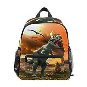 ISAOA Fire Dinosaur Backpack for Boys,Kid's Schoolbag for Kindergarten Preschool Toddler Baby Nursery Travel Bag with…