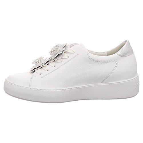 022 Sneaker Donna Paul 4654 Bianco Green x7ZnEqT
