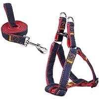 Mimibox No-pull Dog Harness Training Walking Combo