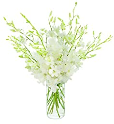 All-White Dendrobium Orchid Bouquet (20 stems) - The KaBloom Collection Flowers With Vase