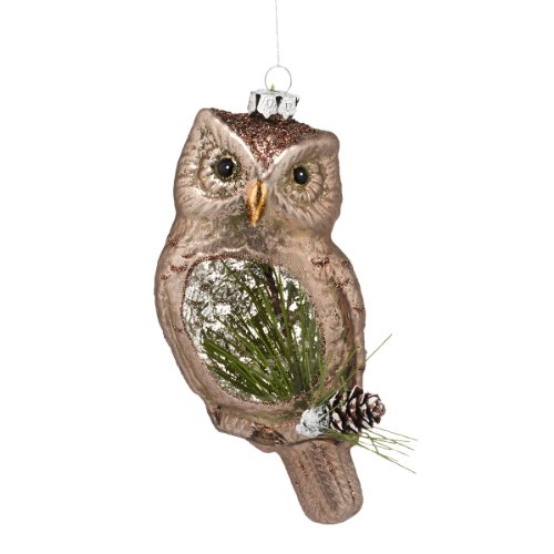 Department 56 Winter's Lodge Frosted Owl Ornament, 6 (Christmas Pinecone Lodge)