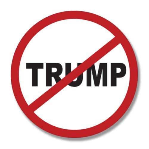 Say No to Trump Protest - Vinyl Sticker - Car Window Bumper Laptop - SELECT SIZE ()