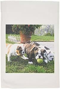 3dRose fl_60013_1 English Bulldogs Play Ball Garden Flag, 12 by 18-Inch