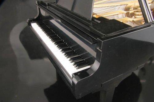 Sega Toys Grand Pianist by Sega (Image #2)