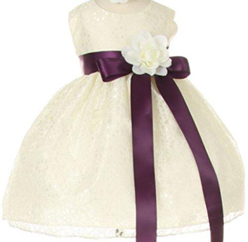 Taffeta Sash Colors Light (Baby Girls' Ivory Lace Dress Ribbon Sash Flowers Girls Dresses Plum Ivory 6M (C11C32B))