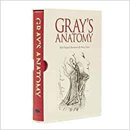 Gray S Anatomy Slip Case Edition 8601200705270 Medicine Health Science Books Amazon Com