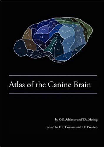 Book Atlas of the Canine Brain by O S Adrianov (2010-04-01)