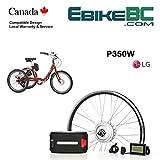 Electric Adult Trike DIY KIT 350/500W E Bicycle E Bike Complete Conversion Kit