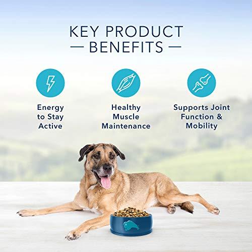 Blue Buffalo Life Protection Formula Senior Dog Food - Natural Dry Dog Food for Senior Dogs - Chicken & Brown Rice - 30 lb. Bag