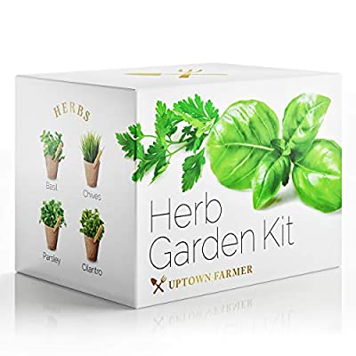 Indoor Herb Garden Starter Kit - Growing Seed Set Gardening Gifts for Women or Men with 100% Non GMO Heirloom Seeds (Basil, Cilantro, Parsley, Chives) Planter Peat Pots, Peg Markers, Scissors + Soil