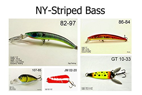 Akuna [SB5A] Pack of 5 fishing lures for Striped Bass for USA 50 states (New York)