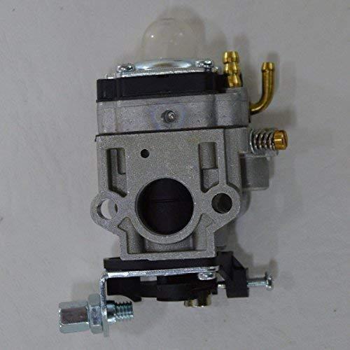 Carburador Motor Sense hasta 58 ccm Cortacésped ...