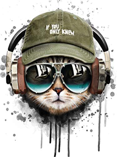 CaptainCrafts New DIY Oil Painting Paint by Numbers Kit 16x20  for Adult Beginner Kids, Linen Canvas - Water Ink Cat Head with Glasses hat Headphones (Frameless)
