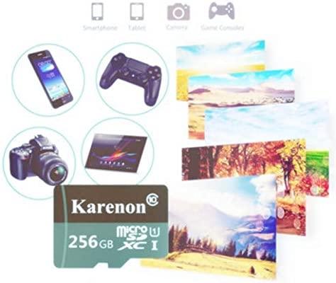Karenon Tarjeta Micro SD 256 GB, microSDXC 256 GB Class 10 Tarjeta de Memoria + Adaptador (DS135-TD) (256GB)