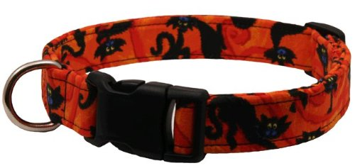 Country Brook Design Halloween Scaredy Cat Designer Dog Collar-S