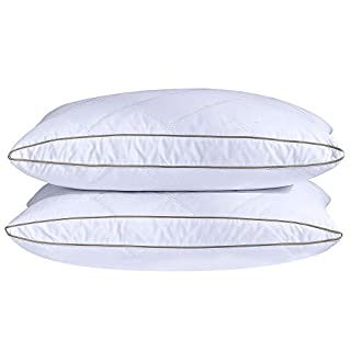 puredown Natural Goose Down Feather Pillows for Sleeping Oval Gusseted Down Pillow 100% Cotton Pillow Cover with Leaf Quilting Standard/Queen Set of 2