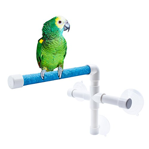 Qulable Shower Bird Perch, Sanded Wooden Parrot Toy Portable Suction Cup Fold Away Window Stand Toys for Small Medium Birds (Sanded (Mirror Perch)