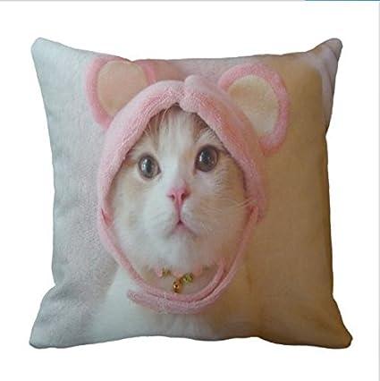 a6374fbfe0e4e Amazon.com  Mag21Bruno Wearing a pink headband cat Pillowcase ...
