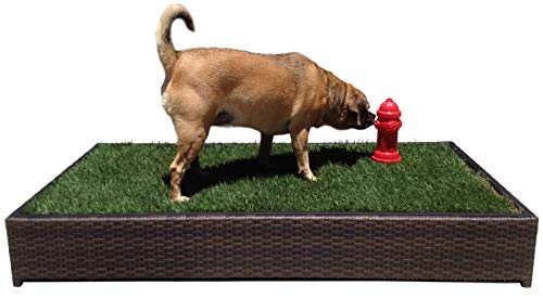 Scented Fire Hydrant for Porch Potty Grass Litter Box, used for sale  Delivered anywhere in USA