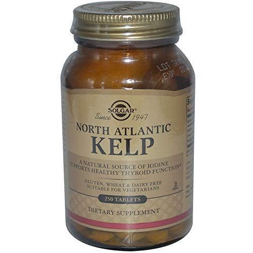 Solgar - North Atlantic Kelp, 250 Tablets