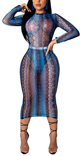 HannahZone Womens Sexy See Through Cover Up Mesh Pencil Dresses Long Sleeve Swimwear Summer Clubwear Blue ()
