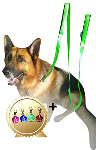 2-handles-dog-leash-8ft-2inch-green-dual-handle-dog-leash-free-bonus-dog-tag-dog-leashes-for-large-d
