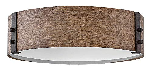 Hinkley 29203SQ Transitional Three Light Outdoor Flush Mount from Sawyer collection in Bronze/Darkfinish, (Mount Hinkley Outdoor)