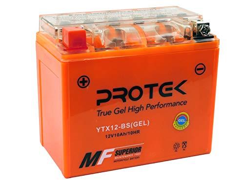 Protek YTX12-BS YTX12 12V 10Ah Sealed AGM Gel Type Battery Maintenance Free For 1997-2000 Honda VTR1000F Super Hawk, 1989-1998 Honda PC800 Pacific Coast, 1998-2001 Honda Interceptor 800 VFR800 ()