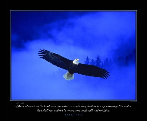 Amazon.com: Christian Poster - Eagle in the Mist - Motivational ...