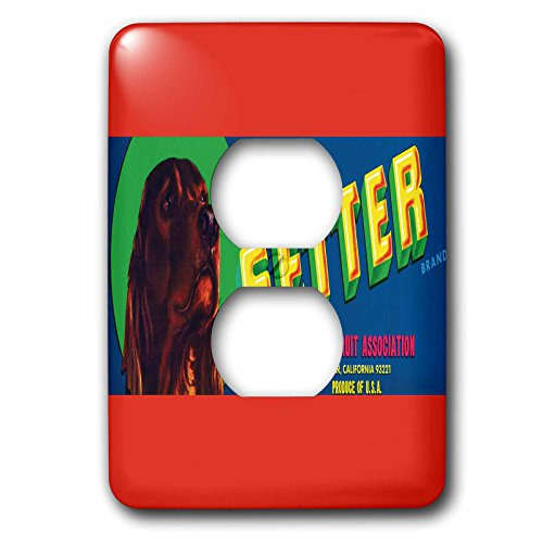 3dRose lsp_171139_6 Setter Brand Exeter Fruit Wit Irish Setter Colorful Crate Label Light Switch Cover (Irish Fruit)