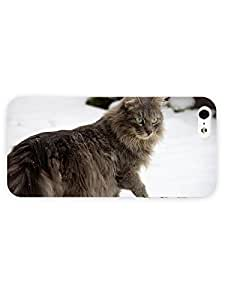 3d Full Wrap Case for iPhone 5/5s Animal Cat Walking In The Snow12