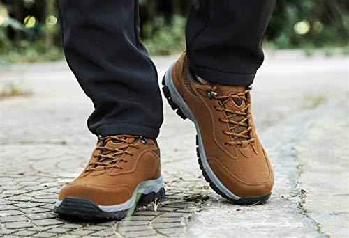 Man Sport Shoes Marrone Casual Hiking Insun Safety Low Sneakers Walking 7wq0dO1