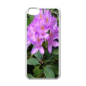 iPhone 5C Phone Case Rhododendron EF65946