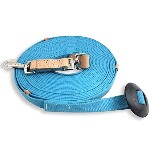 Southwestern Equine 35' Flat Cotton Web Lunge Line with Bolt Snap & Rubber Stop (35', Turquoise)