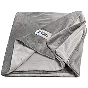 PetFusion Premium Small Dog or Cat Blanket (31x27). Reversible Gray Micro Plush. [100% Soft Polyester] 51