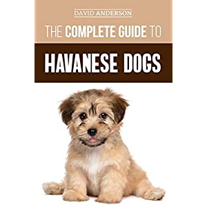 The Complete Guide to Havanese Dogs: Everything You Need To Know To Successfully Find, Raise, Train, and Love Your New Havanese Puppy 9