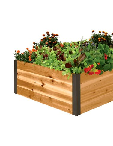 Cedar Raised Garden Bed 3' x 6' x 15'' by Gardener's Supply Company