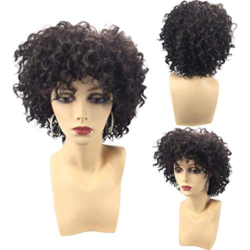 Short Side Fringe Fluffy Afro Curly Synthetic Wig Hair Jet Black Heat Resistance-KADOLA Wigs For Women Human Hair Short/Long/Bangs Hair(Black)