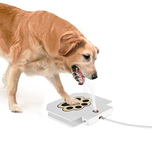 Portable Dog Cat Pet Puppy Drinker Fresh Water Bottle: Portable Pet Water Fountain, Dog Cat Automatic Drinking