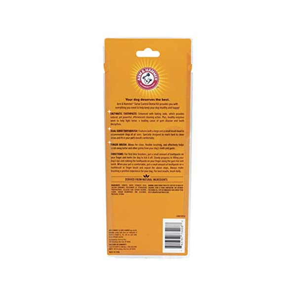 ARM & HAMMER Paste & Brush Set 2