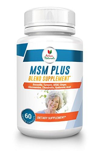 MSM Plus Blend Supplement - 60 Vegetarian Capsules