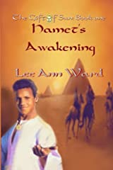 Hamet's Awakening: The Gift of Sun: Book 1 (Volume 1) Paperback