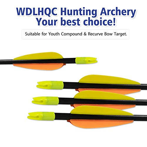 Buy compound bows for target shooting