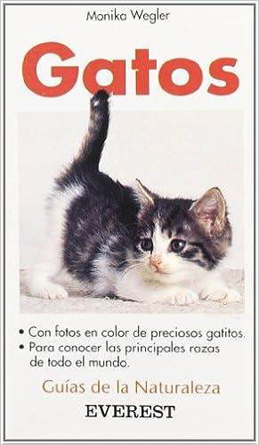 Gatos: Con fotos en color d preciosos gatitos. Para conocer las ...