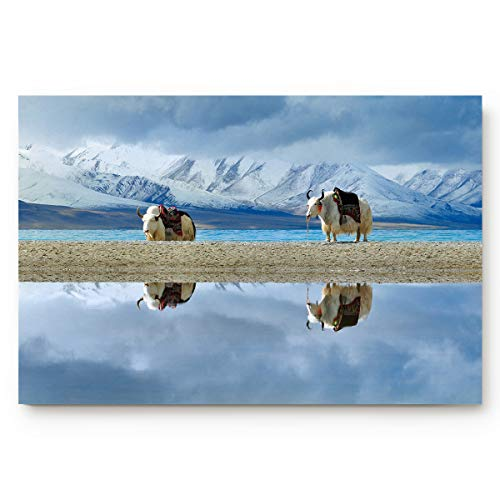 (BABE MAPS Doormat Kitchen Bathroom Soft Durable Entrance Rug Small Carpet Mat Easy to Clean Modern Woven Mat Rug Tibet Reflection Snow Mountain and Yak 18