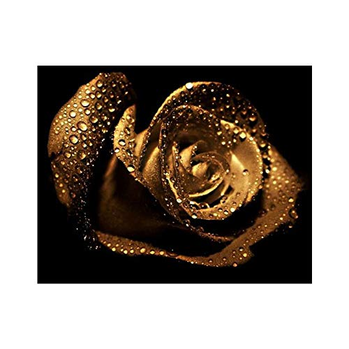 Baulody Gold Rose 5D Full Diamond Painting Kit, DIY Rhinestone Embroidery Full Drill Cross Stitch Arts Craft for Home Wall Decor - Shiny Flowers (A)