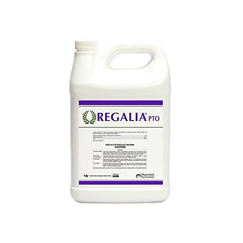 Marrone Bio Innovations Regalia Fungicide Pto  1 Gal
