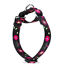 Martingale Collars for Dogs Durable D-ring Heavy Duty No Pull No Escape Dog Collar for Large/Medium/Small Dogs By Dazzber